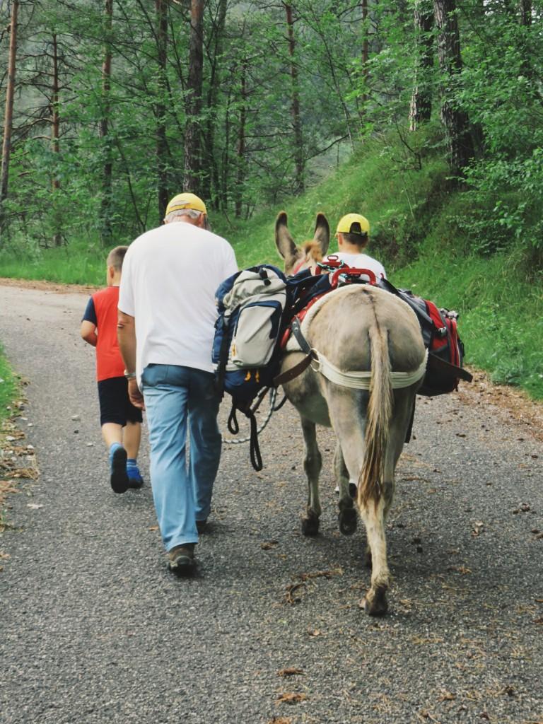 Luca Vivan, eco blogging, ciucoraduno, trekking, asini, Pordenone, Friuli