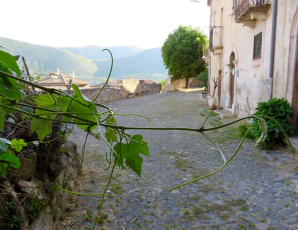 tratturiecammini, Navelli, Abruzzo, tratturo magno