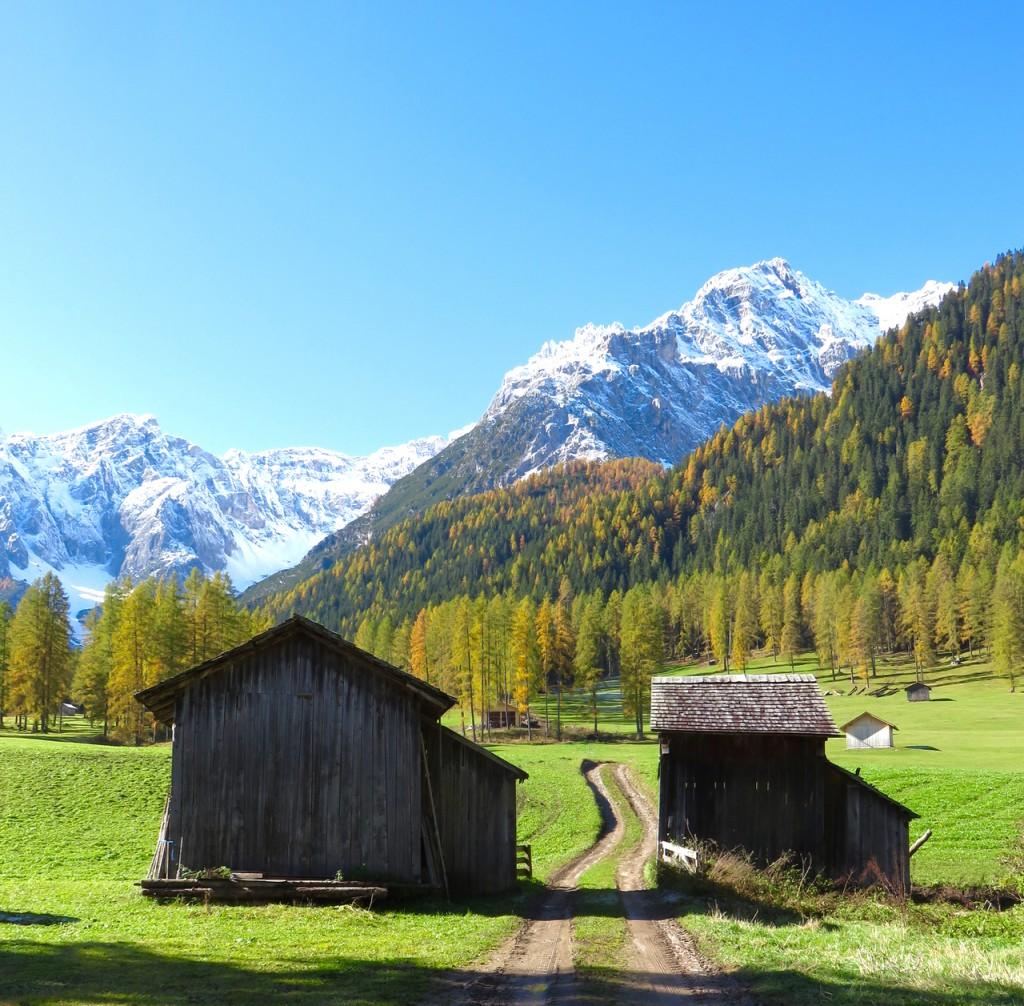 Luca Vivan, travel blogger, Val Pusteria, Val Fiscalina, foliage, Dolomiti, Sud Tirolo, Alto Adige, Parco naturale 3 Cime