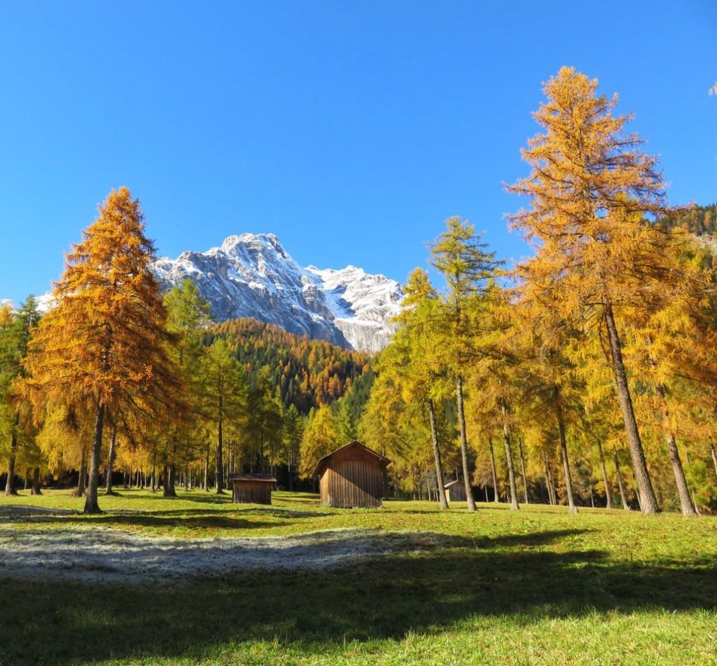 Luca Vivan, travel blogger, Val Pusteria, Val Fiscalina, foliage, Dolomiti, Sud Tirolo, Alto Adige, prati
