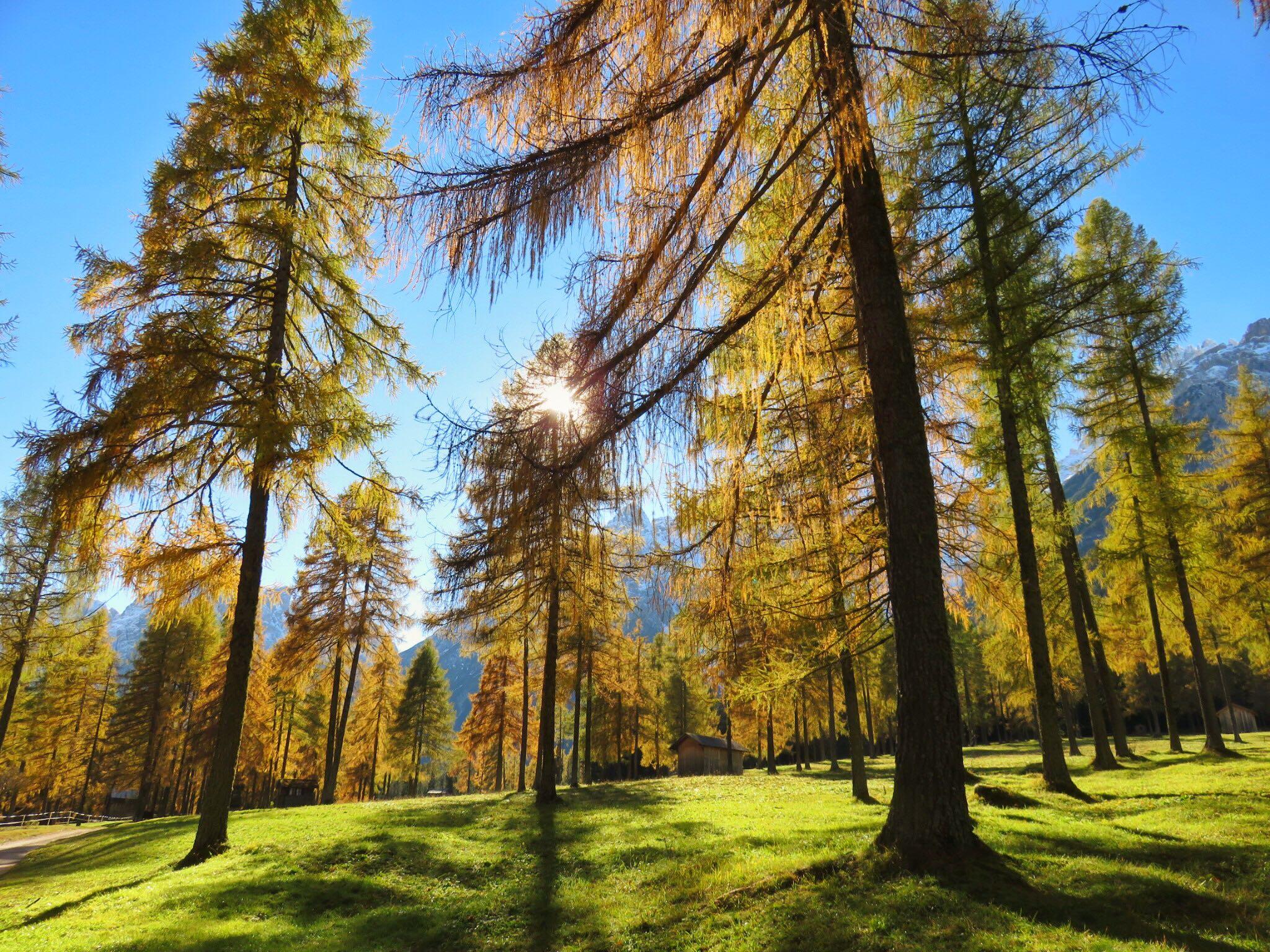 Luca Vivan, travel blogger, Val Pusteria, Val Fiscalina, foliage, Dolomiti