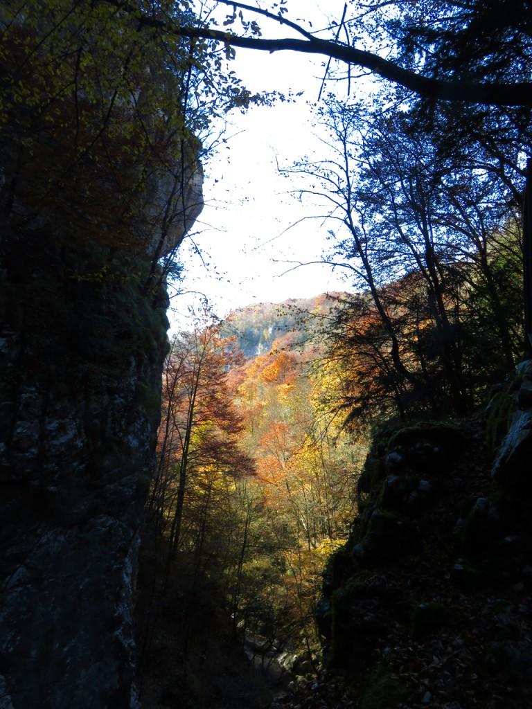 Luca Vivan, travel blogger, Francesca Zonta, Maniago, Val Cosa, Ecomuseo, Lis Aganis, Pordenone, Friuli, Pradis, grotta, canyon, faggeto