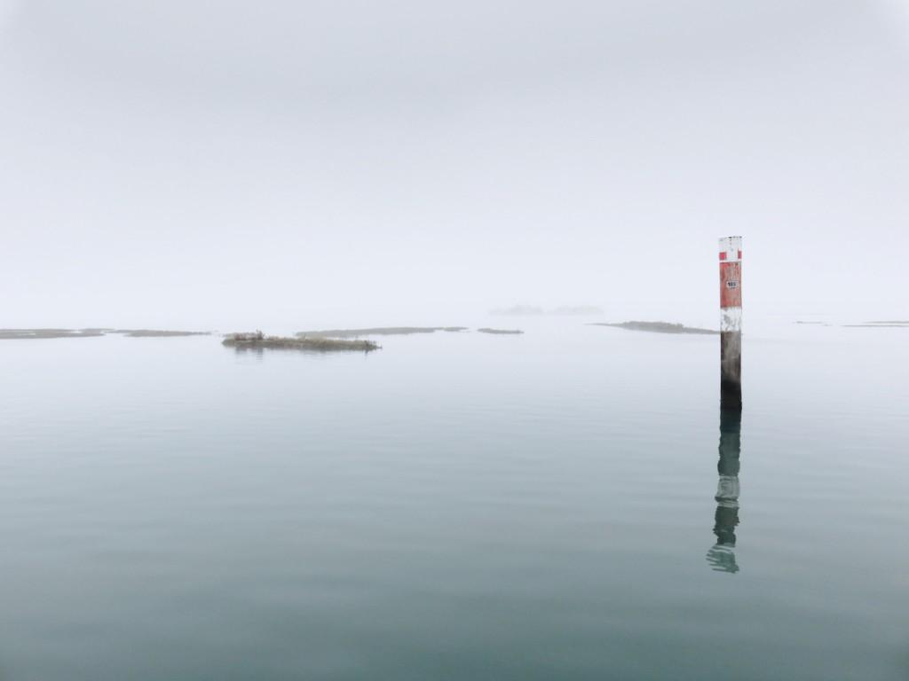 Luca Vivan, inverno a Grado, TBnet, Friuli, laguna di Grado, barene