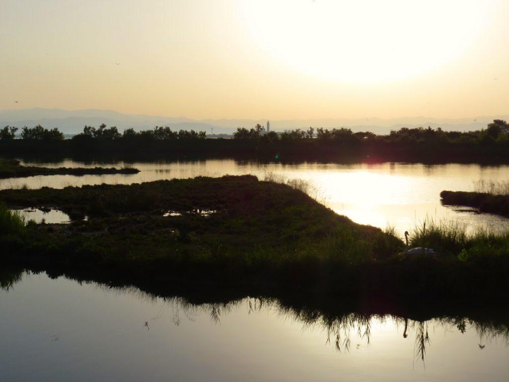 Grado, followGrado, TBnet, laguna di Grado, valle del Moro