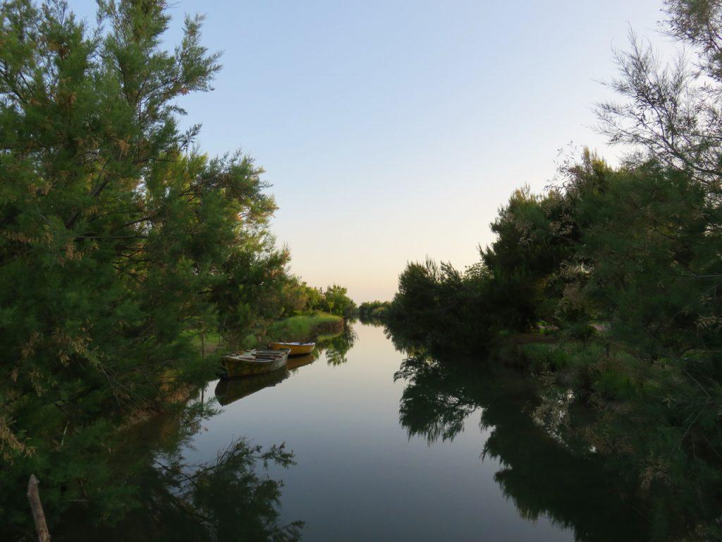 Grado, followGrado, TBnet, laguna di Grado, valle del Moro, alba