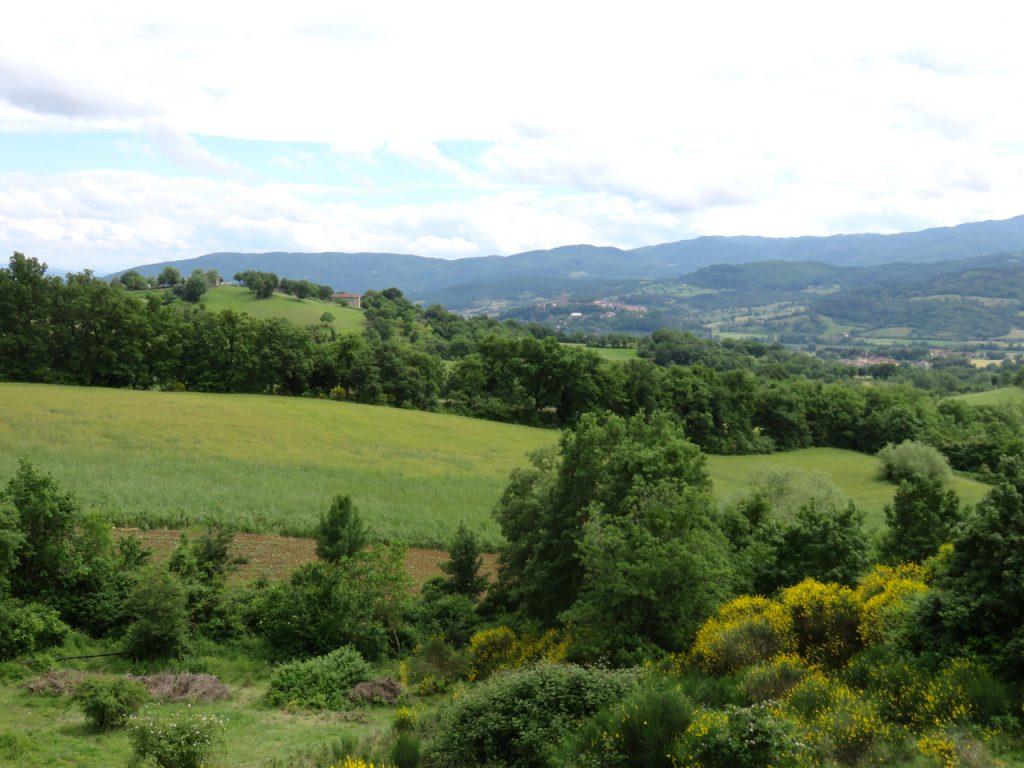 in Casentino, Toscana, Arezzo, fattoria di Selvoli, agricoltura omeodinamica