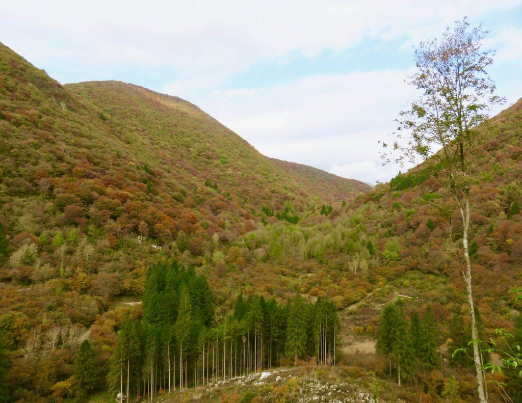 Passiparole, Lisaganis, Ecomuseo delle Dolomiti Friulane, Friuli-Venezia Giulia, Val Meduna, Valinis, foliage Friuli