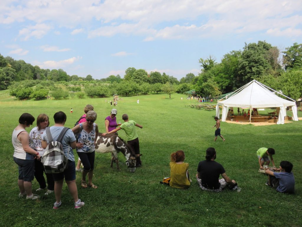 Ciuco Raduno, Parco Rurale San Floriano, Polcenigo, Friuli-Venezia Giulia, donkey, asino, turismo lento, ecoturismo, Compagnia degli Asinell