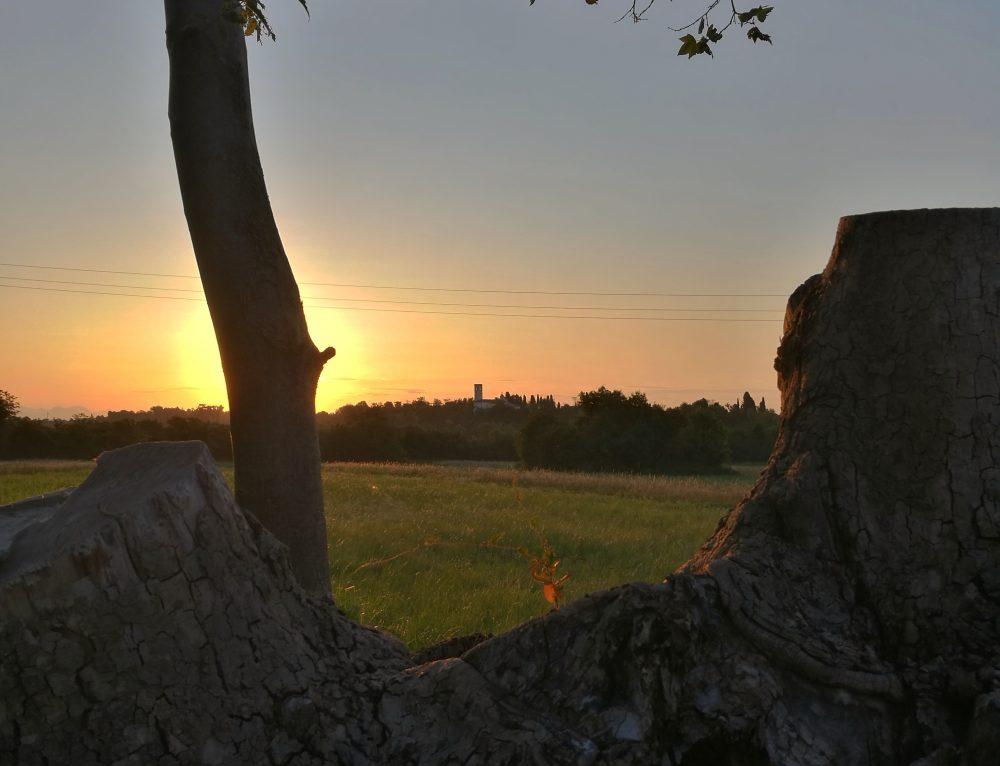 The journey of silence, la necessità di una pausa