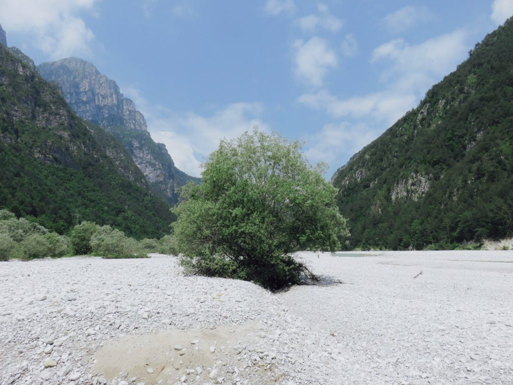 freeuliamo, Friuli-Venezia Giulia, Val Cellina, Dolomiti Friulane, Dolomites, Barcis, Parco Dolomiti Friulane
