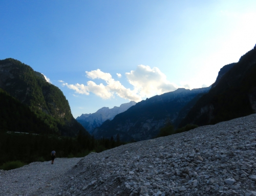 Friulevolution, un passo assieme in Friuli