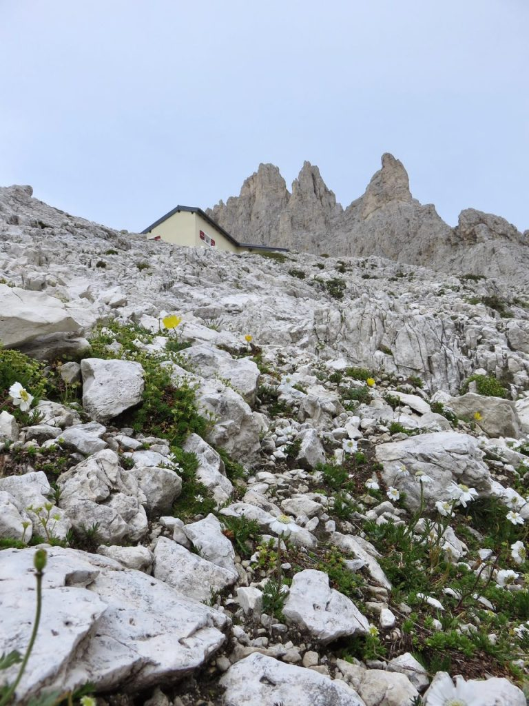 Ecoturismo in Val di Fassa, Val di Fassa, Trentino, Dolomiti, Catinaccio, Rosengarten, Torri del Vajolet, Rigugio Re Alberto