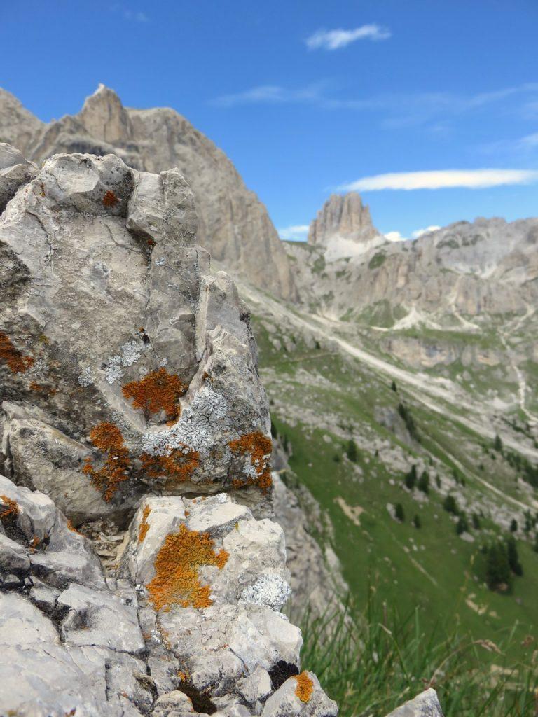 Ecoturismo in Val di Fassa, Val di Fassa, Trentino, Dolomiti, Rosengarten, Catinaccio, Roda di Vaè
