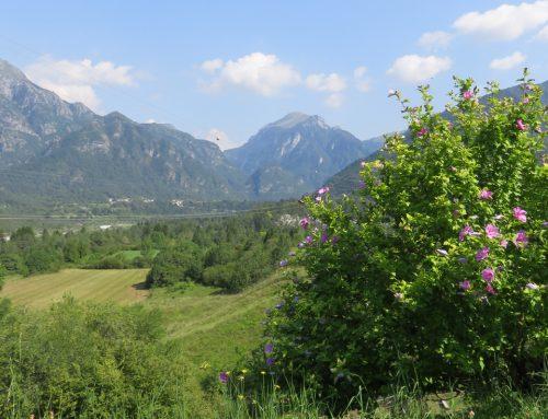 Ritorno tra i monti del Friuli, ritorno al FESTinVAL
