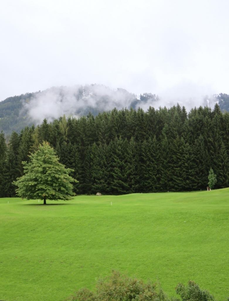 Social Travel Summit, Kitzbühel, Tirolo, Austria, Tirol