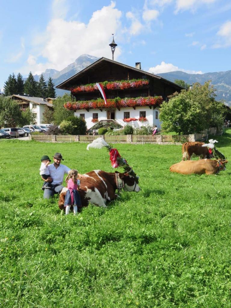 Alpbachtal, Tirolo, Austria, transumanza Alpbachtal, Reith Im Alpbachtal, trashumance,almabtrieb