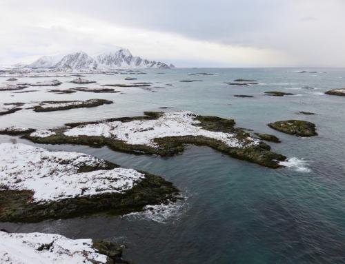 Ecoturismo in Norvegia, quello che ho imparato