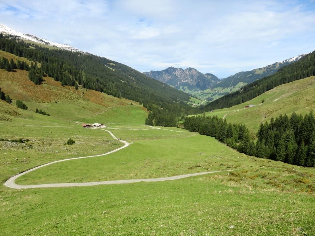 Tirolo, Alpbach, Alpbachtal, Farmekehralm