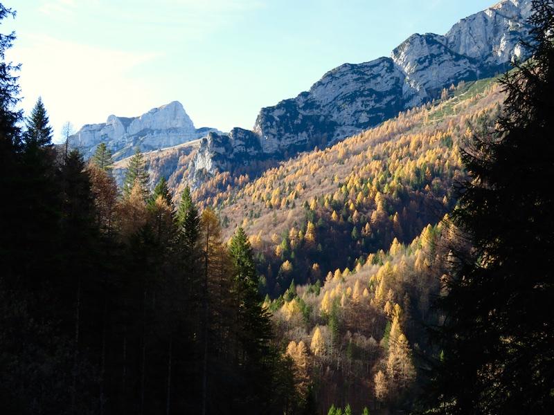 Val Zemola, Dolomiti Friulane, Friuli, Dolomiti, Erto, Luca Vivan
