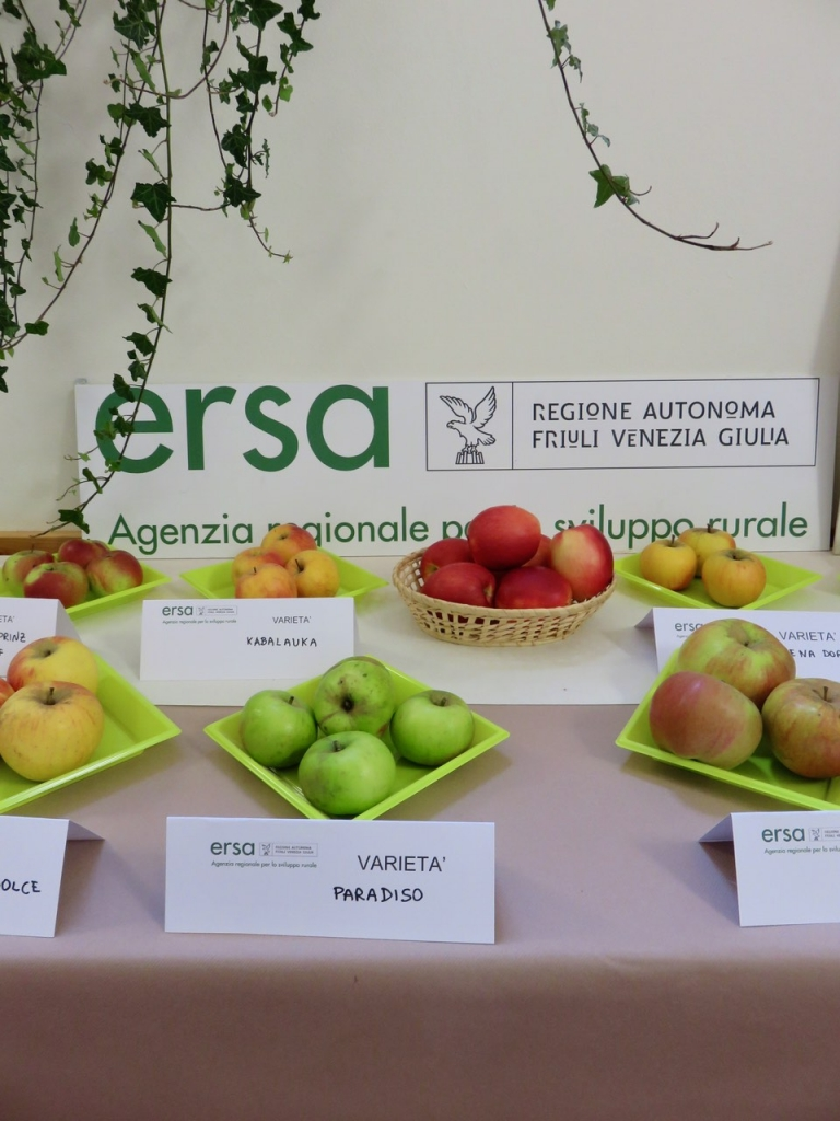 mele antiche, Fanna, Maniago, Mostra Itinerante Mele Antiche, Friuli Venezia Giulia, ERSA