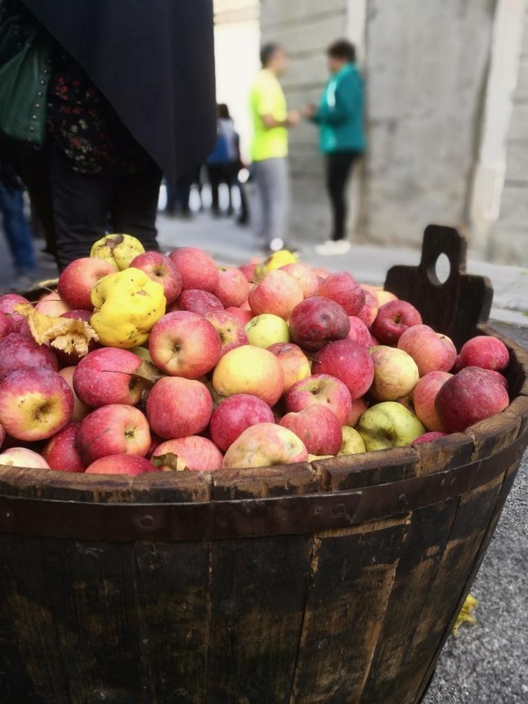 mele antiche, Fanna, Maniago, Mostra Itinerante Mele Antiche, Friuli Venezia Giulia, pedemontana pordenonese