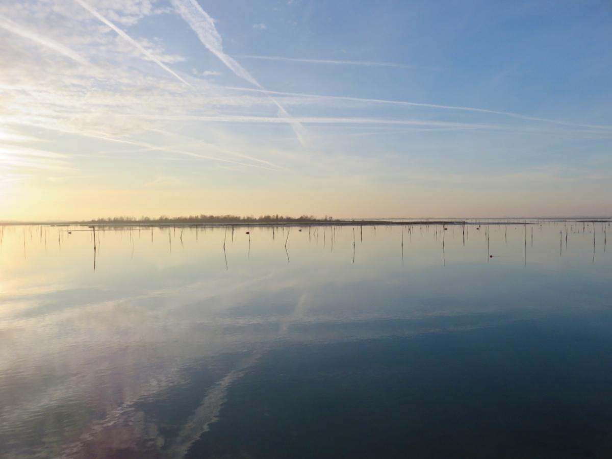 Delta del Po, Rosolina, Rovigo, Veneto, Albarella, Laguna di Caleri