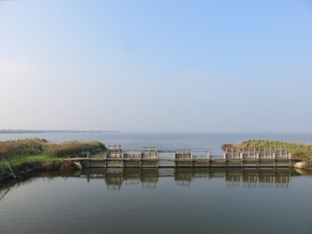 Delta del Po, Rosolina, Rovigo, Veneto, via delle valli Rosolina, valli da pesca delta del po