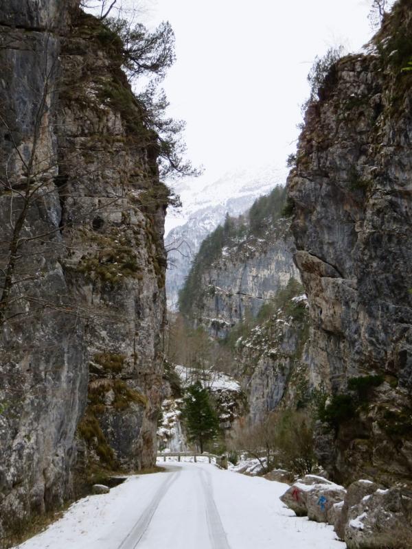 Val Cimoliana, Cimolais, Dolomiti, Dolomiti Friulane, Friuli, Pordenone
