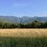 Pedemontana tra Budoia e Polcenigo, Budoia, Dardago, Pordenone, Friuli, Friuli Venezia Giulia