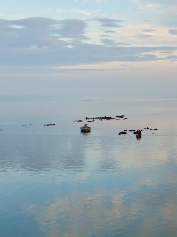 Porto Caleri, Rosolina, nel Delta del po, Delta del Po, Albarella, Veneto
