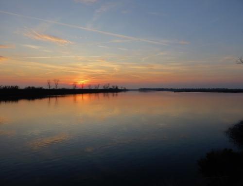 Ritorno nel Delta del Po, itinerari tra acqua e terra