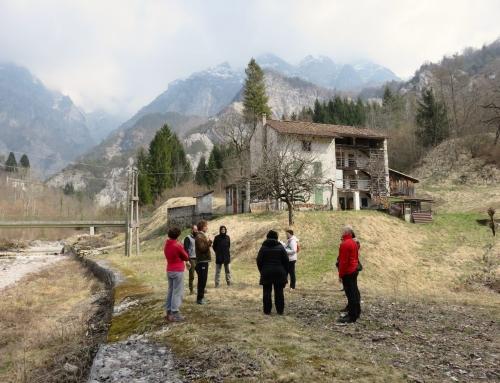 Inizio Primavera tra i monti del Friuli