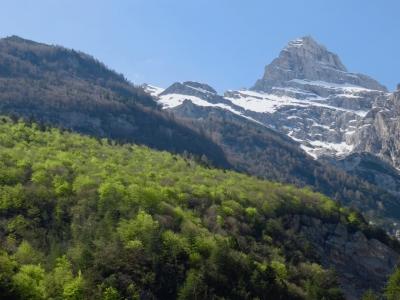 biofilia, Val Cimoliana, Friuli Venezia Giulia, Dolomiti, Duranno, Dolomiti Friulane