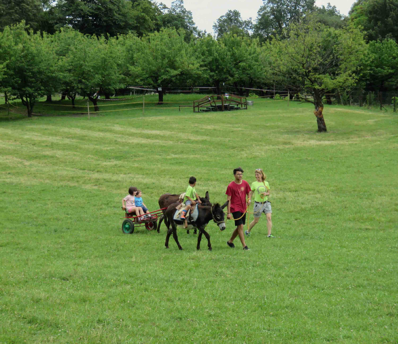ciucoraduno, parco rurale san floriano, polcenigo, pordenone, trekking asini, turismo slow pordenone, Friuli, compagnia degli asinelli