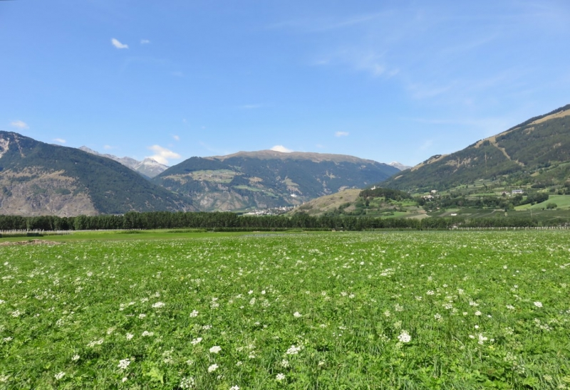 Val Venosta, Sluderno, Vinschgau, Sud Tirolo, Alto Adige, festa medievale trentino alto adige, cosa fare val venosta