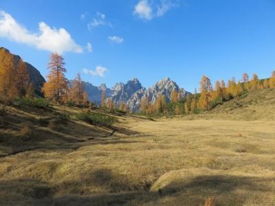 autunno in Friuli, Friuli venezia Giulia, Dolomiti friulane, Udine, camporosso
