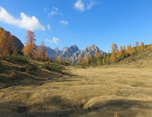 Autunno in Friuli, nell'oro dei boschi