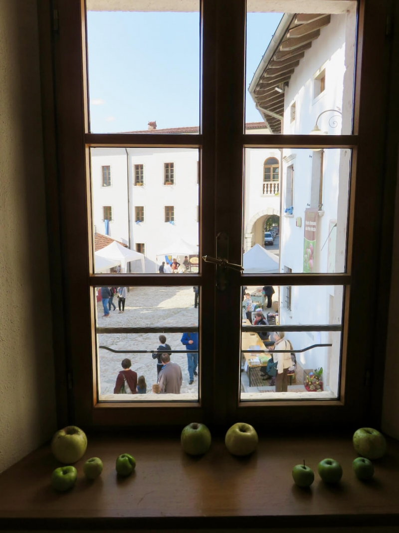 mele antiche, mele antiche friulane, mostra itinerante mele antiche, palazzo colossis, meduno, Friuli Venezia Giulia