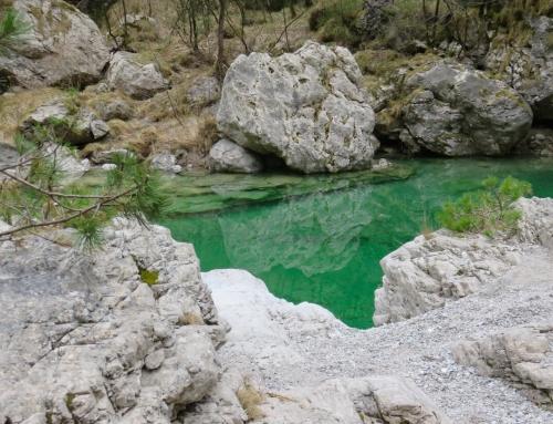 Le pozze smeraldine della Val Tramontina, una gita in Friuli
