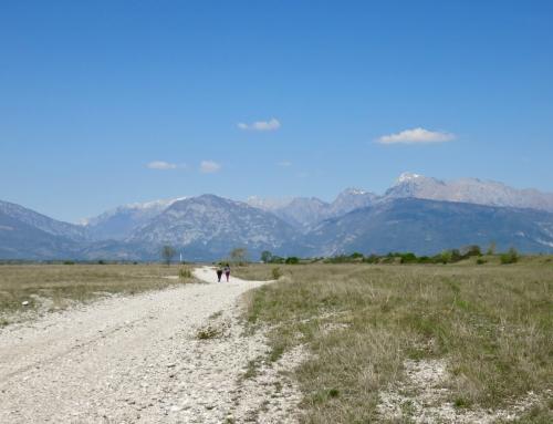 Un assaggio dei Magredi, una steppa in Friuli