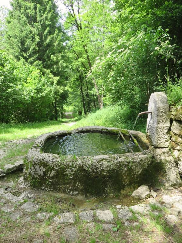 Andreis, fontana di Bosplans