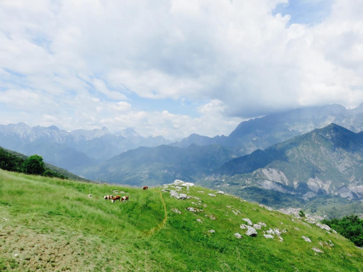 andreis, vista dalla Malga Fara, montagne del Friuli