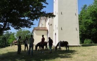 trekking-con-asini-compagnia-degli-asinelli-ciucoraduno-cammino-san-cristoforo-Friuli-asini-davanti-alla-chiesa-di-santa-lucia-di-Budoia