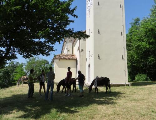 Trekking con gli asini, un piccolo viaggio in Friuli