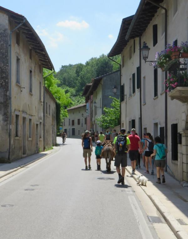 trekking con asini, compagnia degli asinelli, ciucoraduno, cammino san cristoforo, Friuli, asini in cammino a Polcenigo