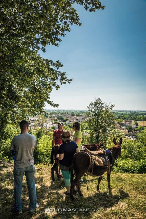 trekking con asini, compagnia degli asinelli, ciucoraduno, cammino san cristoforo, Friuli, sosta sui colli di Budoia