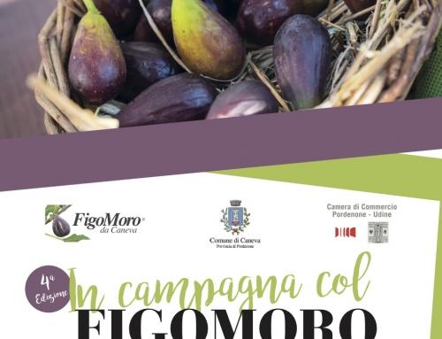 In campagna col figomoro, cibo e cultura in Friuli