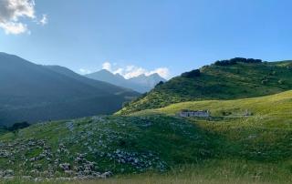 fine estate Friuli, panorama del Piancavallo con gregge di pecore e casera abbanondata