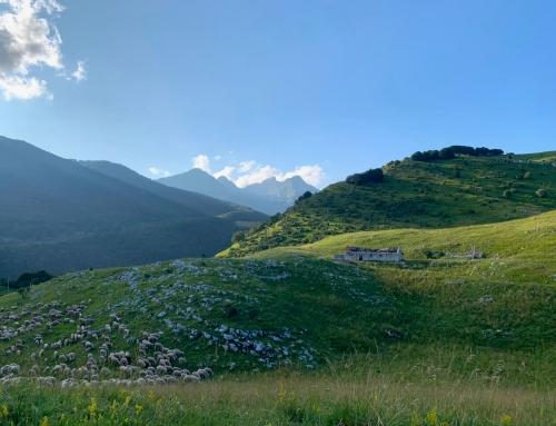 Fine estate in Friuli, quiete e benessere nei luoghi dietro casa