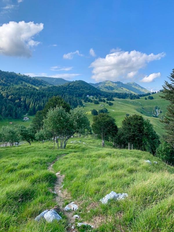 fine estate Friuli, sentiero in Piancavallo